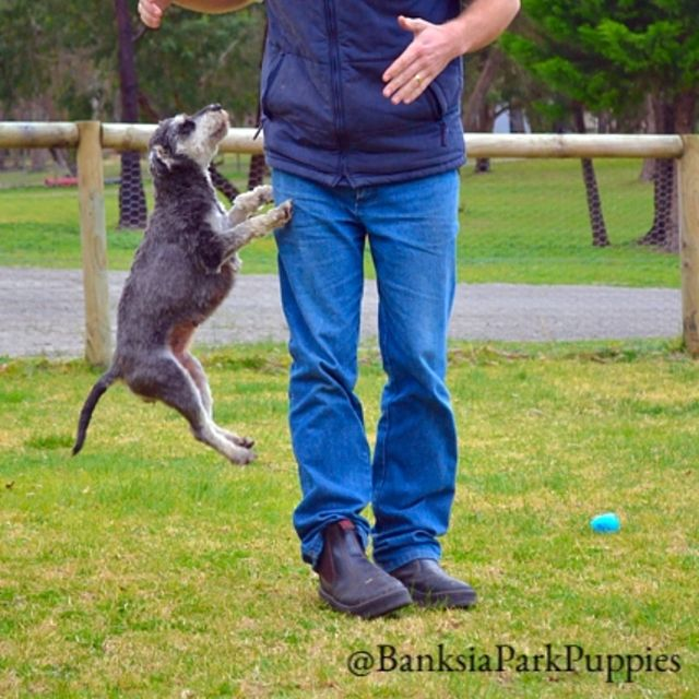 Jumping Annabelle!