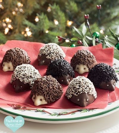 hedgehog chocolate
