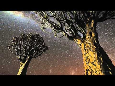 The End of Night: Searching for Natural Darkness in an Age of Artificial...