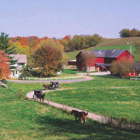 YODER'S AMISH HOME in Millersburg, Ohio. http://amishcountryinsider.com/yoders-amish-home/