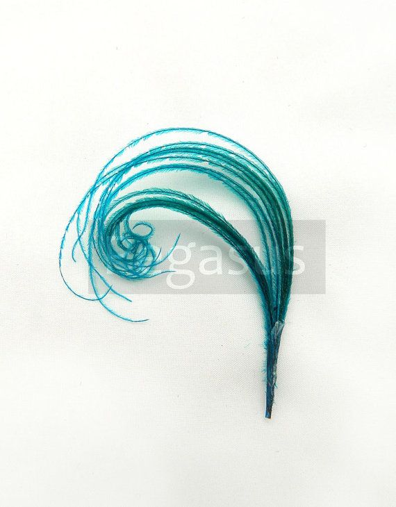 TEAL BLUE Mini peacock feather plume for boutonnieres, earrings, shoe clips, fascinators and wedding invitations (12 Plumes) $6.00