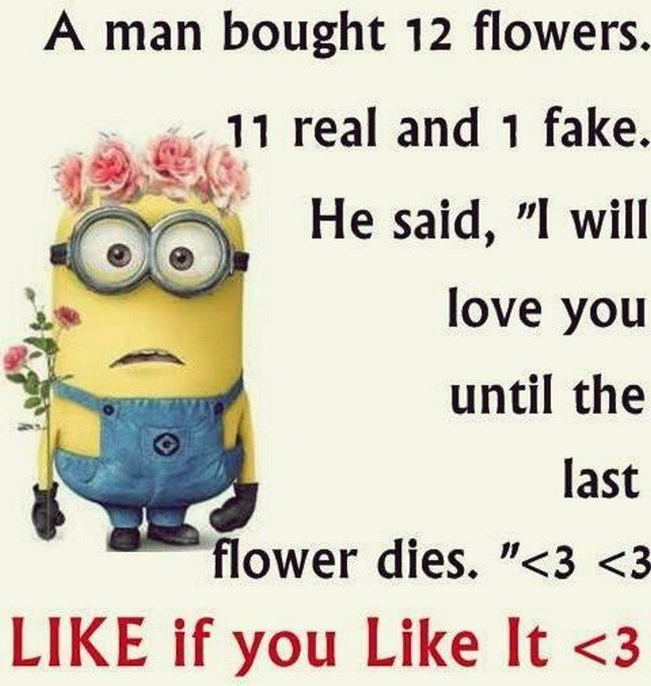 Superior Funny Minions From Colorado (03:16:43 AM, Thursday 13, October 2016 PDT)    66 Pics