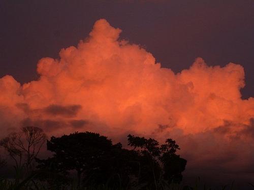 Nubes Salmón