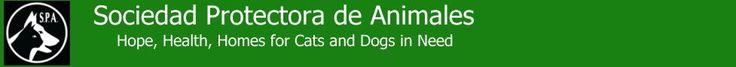 Sociedad Protectora de Animales