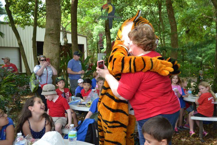 Teachers love Chuffer and Dade City's Wild Things