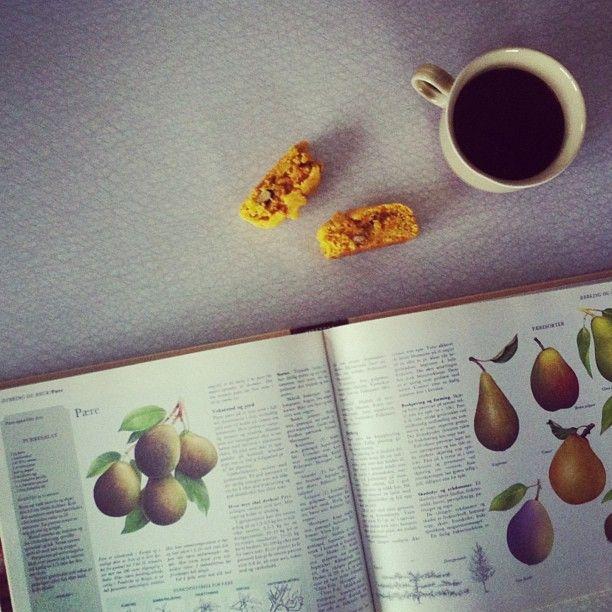 Saffron Biscotti • Pears | Grafisk design | Pinterest | Biscotti ...