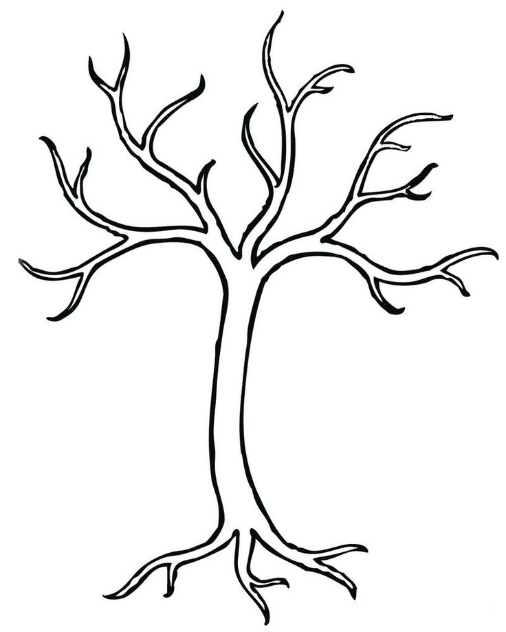 bare tree coloring page preschool  tree coloring page