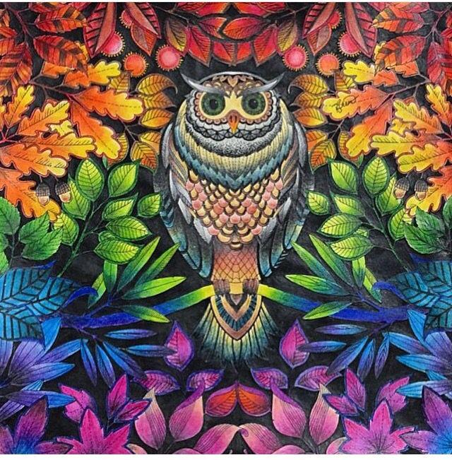 Floresta encantada/ jardim secreto Coruja