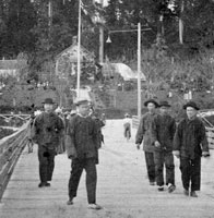 Immigrants from China to Canada. A database at the Library and ...: pinterest.com/pin/81838918201968321