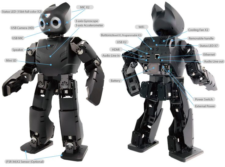 Darwin-OP Humanoid Research Robot - Deluxe Edition - makes an excellent friend.