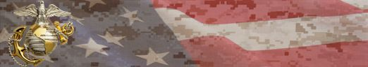 Made for US Marines 238th birthday (Nov 10, 2013). American Flag superimposed on Marine Patter (marpat) background with Eagle, Globe Anchor USMC Emblem (EGA)