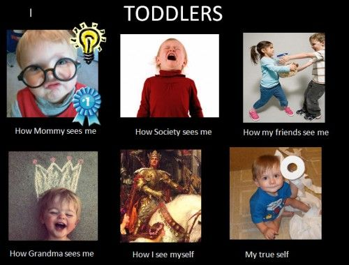toddler memes | Toddler Meme: | Funny | Pinterest ...