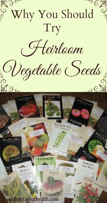 Why you should try heirloom vegetable seeds | ourheritageofhealth.com