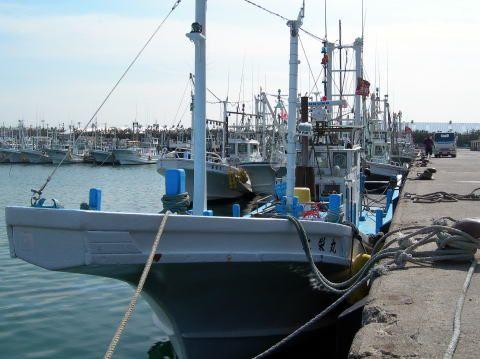 鹿嶋市にある釣り船『大栄丸』さんです。ベテランさんからビギナーさんまで安心して釣りができますよ!
