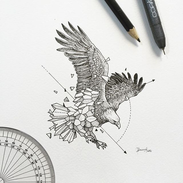 Geometric Beasts | Eagle - Kerby Rosanes (@kerbyrosanes) - gramcommunity is the best instagram web-viewer