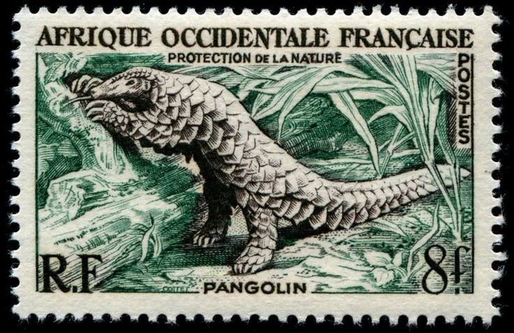 Giant Pangolin, 1955, engraved by René Cottet, issued for use in French West Africa