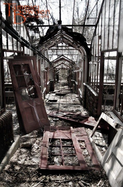 Once there was a greenhouse where nothing grew at all.  Like everything else in the house it had simply been forgotten.