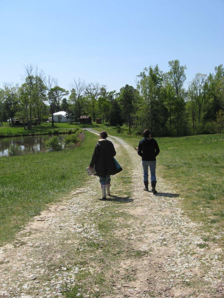 Walking around on the farm.