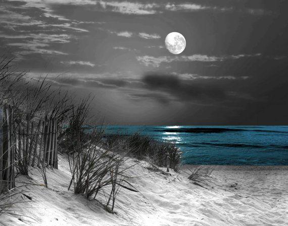 Beach wall art decor black white blue wall pictures coastal moon home decor