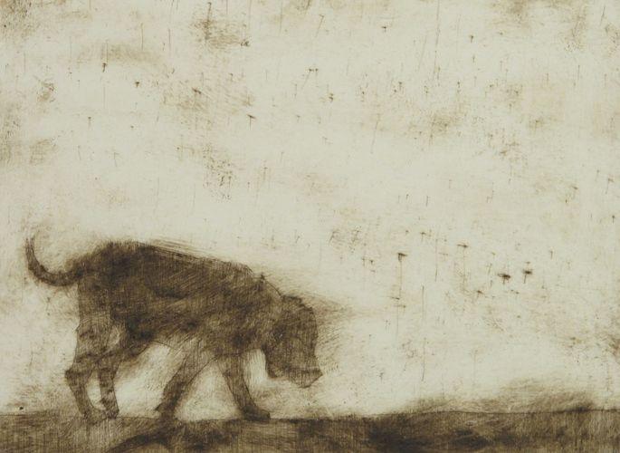 Untitled-dog.jpg (685×500)