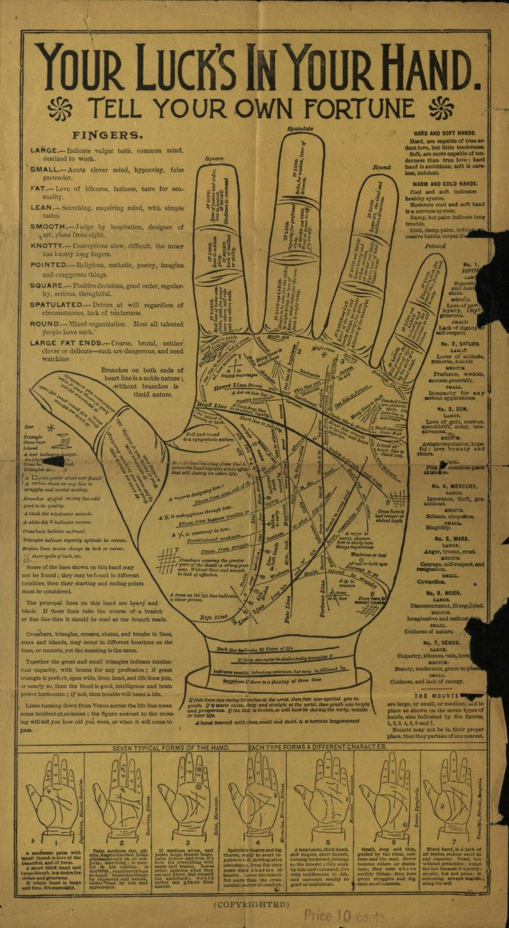 Poster guide to palmistry