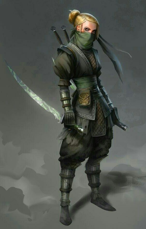 Female Rogue Ninja - Pathfinder PFRPG DND D&D d20 fantasy