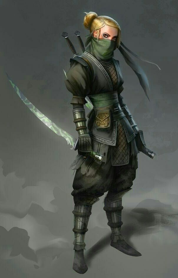 Female Rogue Ninja - Pathfinder PFRPG DND D&D d20 fantasy