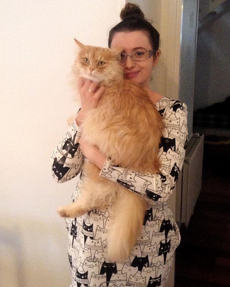 """Polubienia: 109, komentarze: 10 – Paulina Weiher @theCieniu (@paulinaweiher) na Instagramie: """"Pozdrowienia ze Szwecji! Na rękach trzymam Oskara, kota syberyjskiego krewnych :) Ma niesamowitą…"""""""