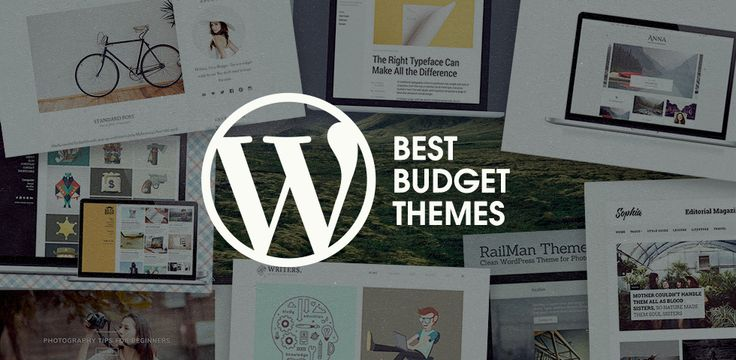 The Best Budget WordPress Themes under $20