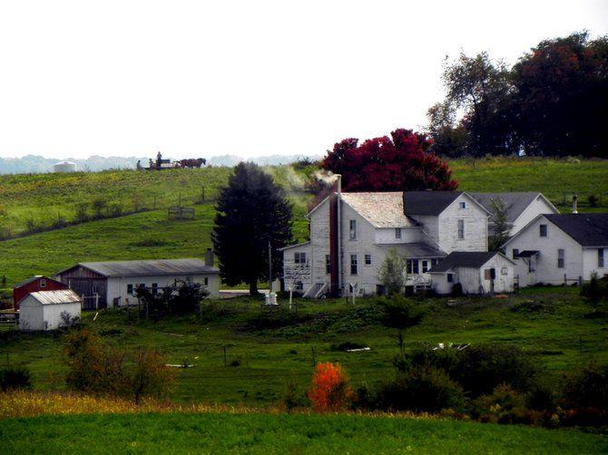 El Tour de la Vida Simple de los Amish   El Tiempo Latino   Noticias de Washington DC