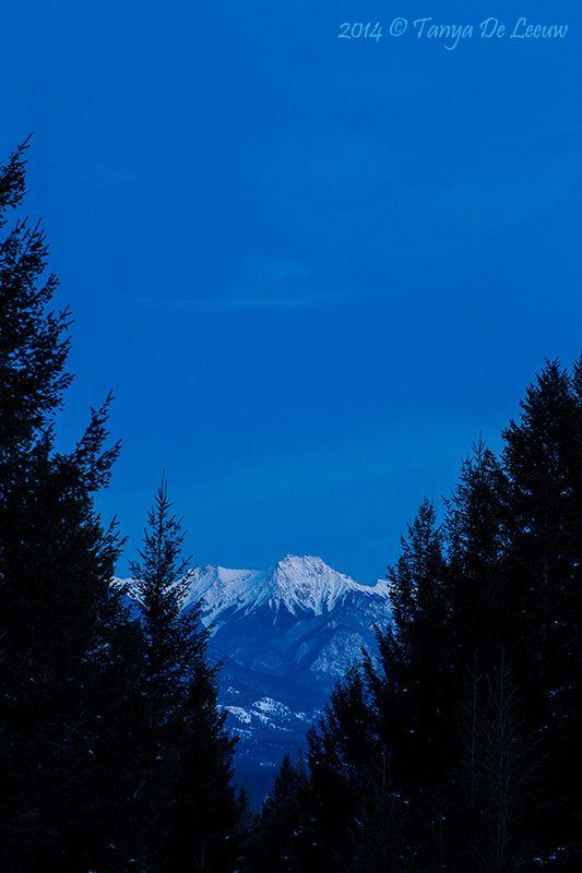 Indigo Skies  http://tanyadeleeuwphotography.blogspot.ca/2014/02/indigo-skies.html