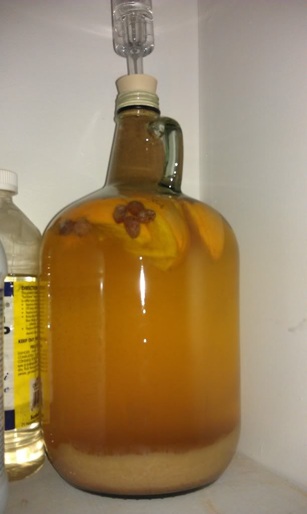 Joe's Ancient Orange Mead - JOAM - Page 1 - Home Brew Forums