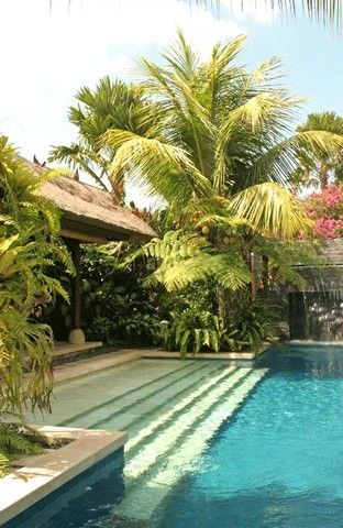 Palm cluster around pool, shallow steps off a rectangle pool (if garage became master and wanted to walk out into water from bedroom)
