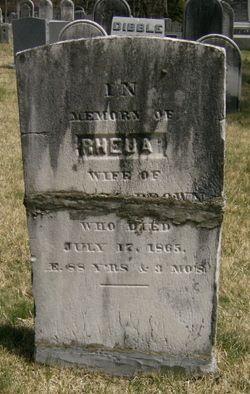 Betty's Boneyard Genealogy Blog: Fearless Females: RHEUA or RUHAMAH, wife of SAMUEL BROWN of Pound Ridge, Westchester County New York #genealogy