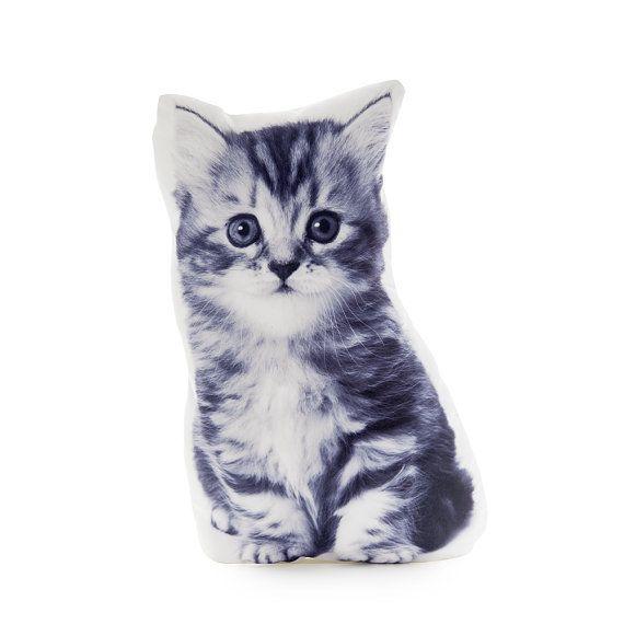 Kitten Kitten Pillow Kitten Cushion Cat Cushion Cat