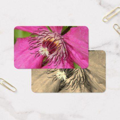 Clematis - pink petals flower - natural background business card - flowers floral flower design unique style