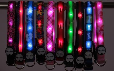 Share Tweet Pin Mail Dog E Glow LED Dog Collars & Leashes  Dog-E-Glow's lighted LED dog collars are high quality, fashionable, and weather resistant. ...