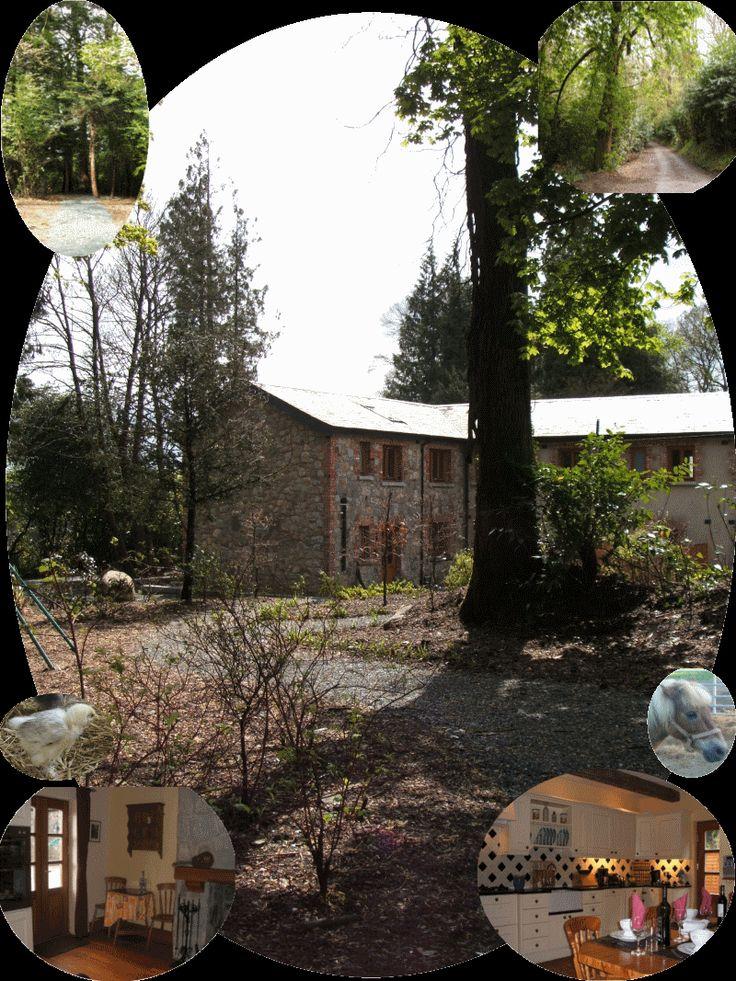 quiet day on the farm...  www.croneybyrneholidays.com