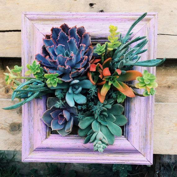 This is sooo cool -Vertical Succulent Garden Planter by SucculentWonderland on Etsy, $60.00