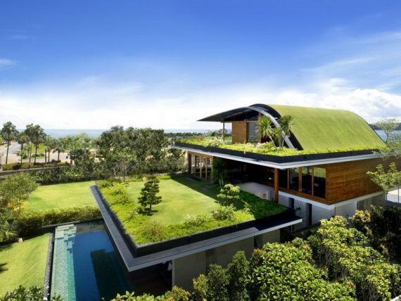 Блог им. Asya: экологичный дом-сад