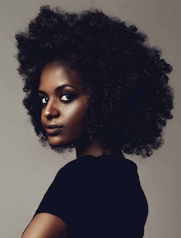 36 best images about cheveux afros on pinterest flies