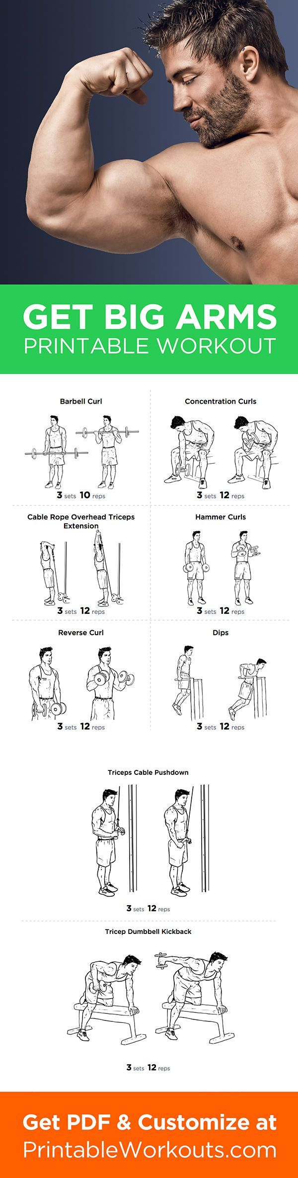 Big Arms Workout: Biceps and Triceps Exercises Routine (Diet Workout Lifestyle)