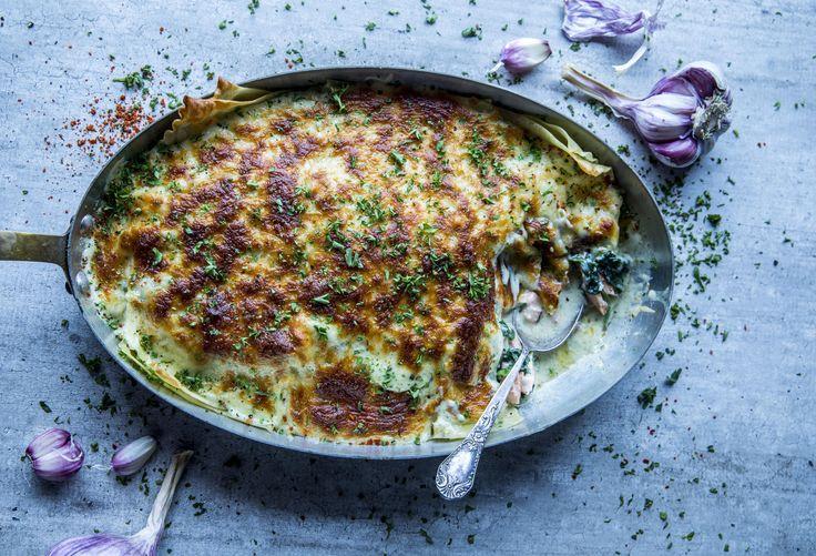 Lakselasagne med spinat og pesto