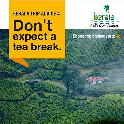 Kerala Trip Advice 4 Discover More: https://www.keralatourism.org/munnar/