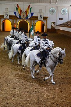 The Royal Andalusian School of Equestrian Art. Show. Jerez de la Frontera, Andalucía Spain