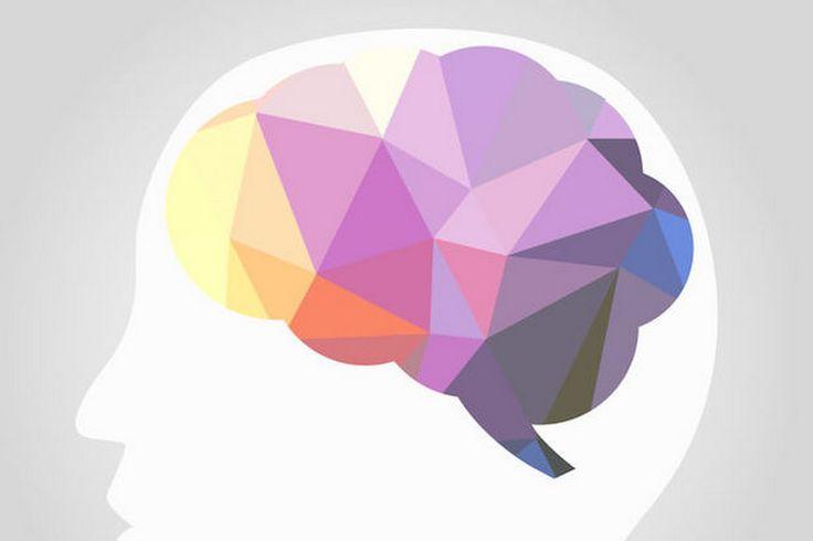 #女性の脳 は、 #妊娠 ・ #出産 を通して一部の領域の灰白質が小さくなることがわかった。子どもに対する共感を強めるための「シナプスの再配線」をしているのかもしれない。 - WIRED.jp - Google+