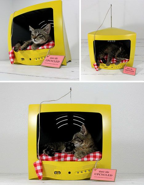 A hollowed-out television provides an enclosed resting space for cats, while its antenna can be tethered to a play toy for additional amusement.