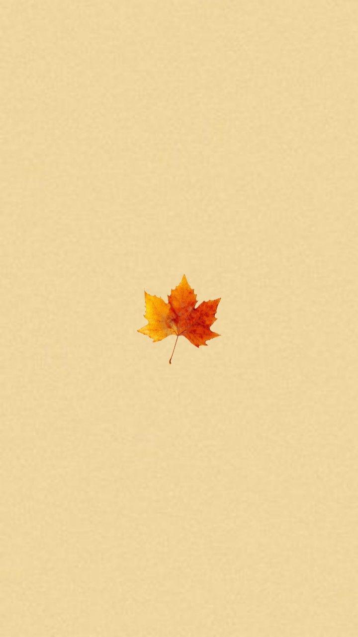 Fall Home Screens : screens, 𝘮𝘢𝘭𝘭𝘰𝘸ˢʰⁱᵗ, RANDOM, WALLPAPERS, Watercolor, Wallpaper, Iphone,, Screen, Wallpaper,