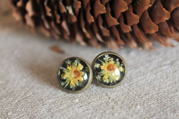 Pressed flower terrarium earrings tiny herbarium by Miodunka