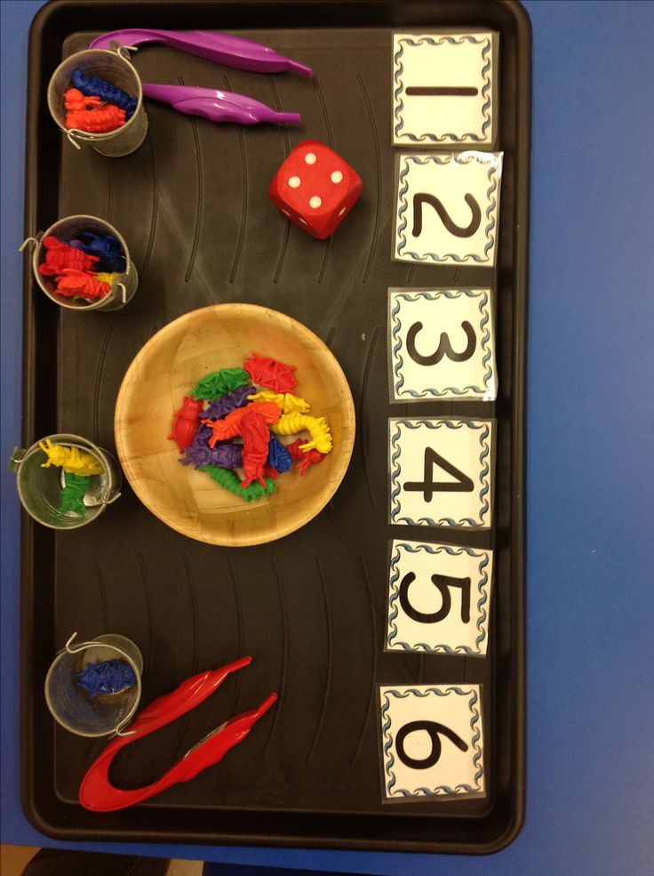 Roll the dice and put the mini beasts into the buckets with their friends... using the tweezers of course!